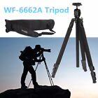 WF-6662A Professional Digital DSLR camera Video Tripod with Ball Head Aluminium