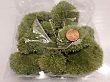 Live Stone Moss Miniature Garden Craft Fairy Bonsai Garden Plant Decor Cushion