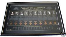 ANZACs of Gallipoli