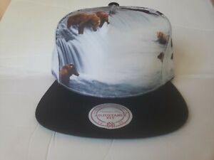 Mitchell & Ness Vancouver Grizzlies Expansion Pack Limited Edition Snapback Hat