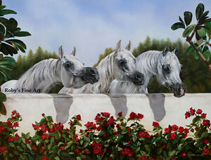 """3 Arabian Mares """"The Line Up"""" Horse Art Print  Limited Edition By Roby Baer PSA"""
