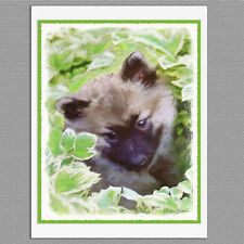 6 Keeshond Puppy in the Garden Dog Blank Art Note Greeting Cards