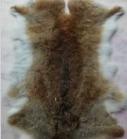 1x Rabbit Skin Natural Tanned Real Fur for Animal Training Dummy Craft Gray Pelt