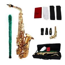 Saxophone Sax Eb Be Alto E Flat Brass Carved Exquisite w/Case+Accessories N7W5