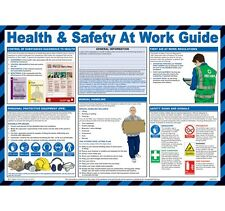 Health & Safety At Work Sign C.O.S.H.H. Poster Manual Handling First Aid Chart