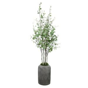 Uttermost Aldis Potted River Birch - 60146