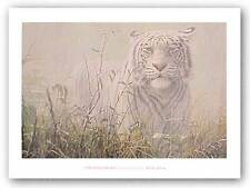 TIGER ART PRINT Monsoon White Tiger John Seerey Lester