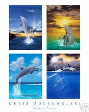 NEW Four Dolphins 16x20 Art Print Poster by Dobrowolski