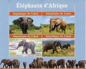 Chad Wild Animals Stamps 2020 MNH African Elephants Mammals Fauna 4v M/S