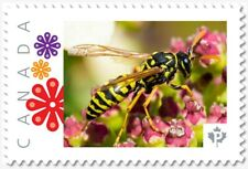 uq. Wasp = Yellow & Black = Picture Postage stamp MNH-VF Canada 2019 [p19-02sn25