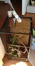 Terrario in rete per camaleonti usato completo di accessori rami luci piante