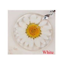 Amber Sweater Chains Daisy/Rose Pendant Transparent Pressed Flower Necklace