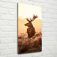 Wandbild Druck auf Plexiglas® Acryl Hochformat 70x140 Hirsch Sonnenaufgang
