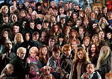Ravensburger - 1000 PIECE JIGSAW PUZZLE - Harry Potter Challenge
