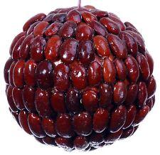 Seed Bean Mosaic Decorative Kissing Ball Ornament Natural Christmas Tree 452e