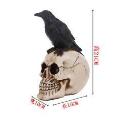 Grim Gothic Perched Raven on Skull Statue Bird Crow Skeleton Figurine Horror