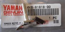 Genuine Yamaha YFM350 YFM400 Starter Motor Repair Brush & Bolt 4KB-81818-00
