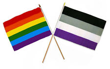"12x18 12""x18"" Wholesale Combo Gay Pride Rainbow & Asexual Stick Flag"