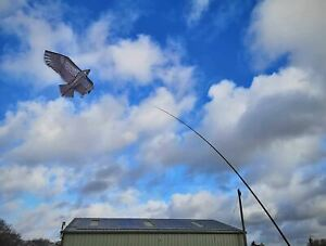 Hawk Kite Bird Scarer,4M Telescopic Pole,Bird Deterrent,Protect Pond Garden Crop