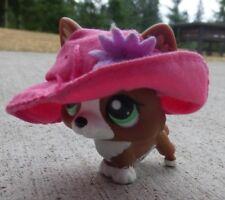 Littlest Pet Shop LPS Puppy Dog Welsh Corgi Brown White Hot Pink Hat Green Eyes
