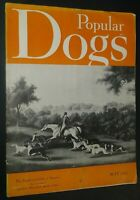 Popular Dogs Illustrated Magazine Greyhound Cover + Champion Photos May 1952