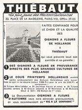 W5408 Thiè Baut Oignons a fleurs de Hollande - Pubblicità 1956 - Advertising