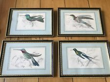 William Home Lizars (1788-1859) Set of 4 bird Etchings in black and gold frames