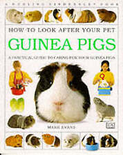 Guinea Pigs (How to Look After Your Pet)-ExLibrary