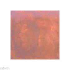 Tru Tint Concrete Acid Stain: Redwood (1 Gallon)