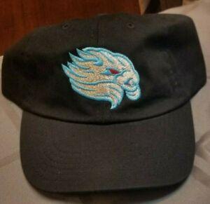 Lancaster JetHawks Copa EL Viento  Adjustable hat. Brand New Colorado Rockies