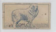 1949 Turf Famous Dog Breeds Tobacco #17 Pyrenean Mountain Non-Sports Card 0f3