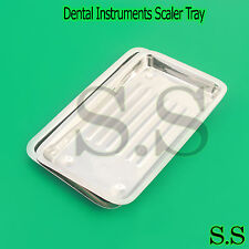 2 Dental Instruments Scaler Tray Lab Dentist Tools Autoclavable