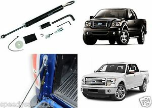 Dee Zee DZ43200 Tailgate Shock Assist For 2004-2014 Ford F-150 New Free Shipping