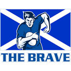 PAINTING SPORT SCOTLAND RUGBY FOOTBALL FLAG BRAVE 30x40 cms POSTER PRINT BMP1120