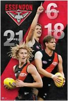 AFL - Essendon Bombers Players POSTER 61x91cm NEW Heppell Hurley Daniher footy