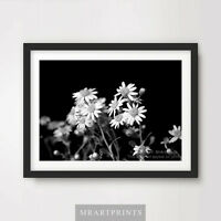 BLACK & WHITE WILD DAISIES Art Print Poster A4 A3 A2 Photography Daisy Garden