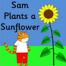 SAM PLANTS A SUNFLOWER teaching resources on CD- Growing, Summer- EYFS, KS1