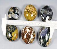 Collection Amazing Ocean Jasper Agate Geode Crystal Small Druzy Slab Reiki Stone