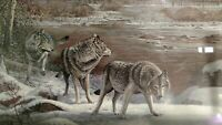 Scott Zoellick Brule River Passage Print Signed Numbered Dated Snow Wolves 1987