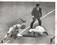 1964 Baseball Wire Photo,Joe Amalfitano,Chicago Cubs, Richie Allen, Phillies