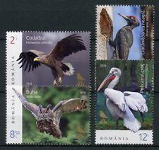 Romania 2018 MNH Bird Records Woodpeckers Pelicans Owls 4v Set Birds Stamps