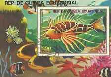 Timbre Poissons Guinée équatoriale o lot 4531