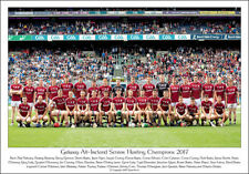 Galway All-Ireland Senor Hurling Champions 2017: GAA Print