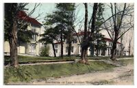 Early 1900s Lake Avenue Residences, Montrose, PA Hand-Colored Postcard *5H1