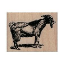 New Goat Standing Rubber Stamp, Goat Stamp, Farm Animal Stamp, Mammal Stamp
