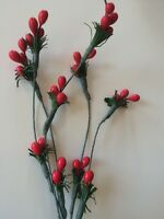 Vintage Red Hat Stamen Millinery Shabby Fruits Hats Design Fairies Dolls