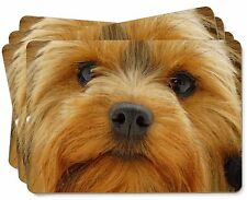 Yorkshire Terrier Dog Picture Placemats in Gift Box, AD-Y10P