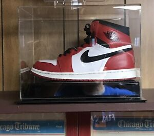 2012 Nike Air Jordan I Retro DMP Shoe Display The Last Dance Mancave