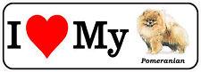 "I LOVE MY POMERANIAN Decal Vinyl Bumper Sticker Animal Dogs 7"" x 2.5"" Pets"