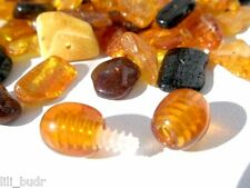 NATURAL polished holed drilled loose beads Baltic AMBER 70 pc + 1 plastic clasps